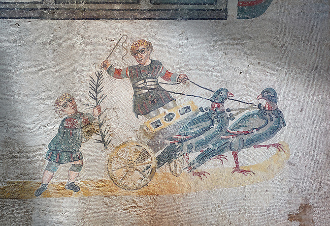Close up picture of the Roman mosaics of the room of the Small Circus depicting Roman boys riding small chariots pulled by pigeons in a small circus, The Vestibule of The Smnall Circus, room no 41  at the Villa Romana del Casale, first quarter of the 4th century AD. Sicily, Italy. A UNESCO World Heritage Site.<br /> <br /> The Roman mosaic know as the Small Circus at the Villa Romana del Casale depicts a scene of a chariot race from the Circus Maximus in Rome. Two wheeled chariots, driven by children,  are racing around a central Pina (barrier) being drawn by fowl and web footed birds. The four chariots represent the four factions that raced against each other at the Circus and the tunics of the cild charioteers and the birds pulling their chariots are distinguished by the four different colours used by each faction.