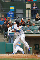 Myrtle Beach Pelicans outfielder Charcer Burks (24) at bat during a game against the Frederick Keys at Ticketreturn.com Field at Pelicans Ballpark on April 10, 2016 in Myrtle Beach, South Carolina. Myrtle Beach defeated Frederick 7-5. (Robert Gurganus/Four Seam Images)