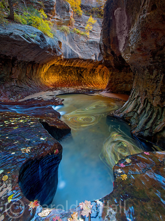 The Subway is the main attraction after a long arduous hike in Zion National Park, Utah,with near psychedelic colors from the reflected light.
