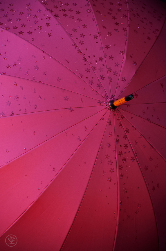 Detail of a dark pink umbrella, which patterns when wet.