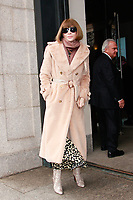 NEW YORK, NY - FEBRUARY 11: Anna Wintour<br />