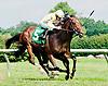Umbraggio winning at Delaware Park on 7/22/13