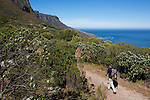 CAPE TOWN, SOUTH AFRICA FEBRUARY 28: Hiking expert Tim Landy walks along the pipe track to Kasteel Port with a view of Camps Bay and The Atlantic ocean on February 28, 2016 in Cape Town, South Africa. The city offers many different hiking trails close to the city center. The Pipe track to Kasteel port is one of the most challenging hikes in Cape Town. (Photo by: Per-Anders Pettersson)