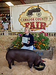 Pigs. 80th Amador County Fair, Plymouth, Calif.<br /> .<br /> .<br /> .<br /> .<br /> #AmadorCountyFair, #1SmallCountyFair, #PlymouthCalifornia, #TourAmador, #VisitAmador