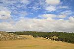 Israel, Shephelah, a view of Lahav forest from Hurvat Rimon