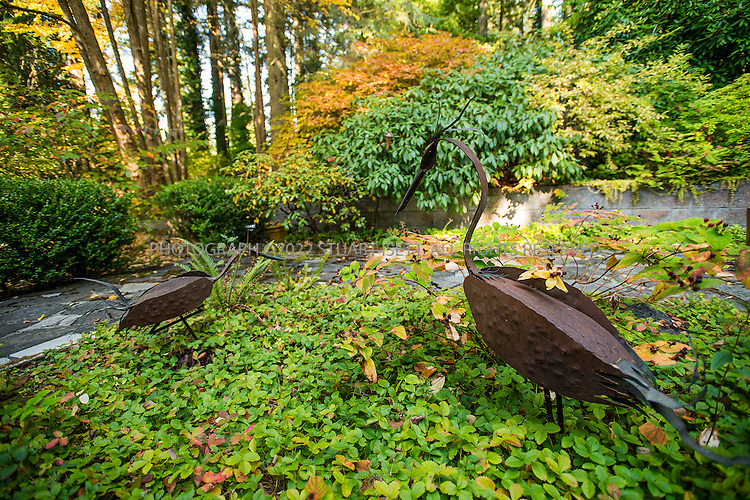 "10/9/2012--Sammamish, WA, USA..VIEW: Exterior showing garden sculptures (agent say by FL Wright)...Architect Frank Lloyd Wright planned his ""Usonian"" homes to be affordable for middle-class families. The 1,950 square foot Brandes home is for sale in Sammamish, Washington (30 minutes from Seattle) at $1.39 million. It features three bedrooms, two bathrooms and a small, separate office/study space...The home was built in 1952, and has redwood trim and Wright's original furniture and some garden sculptures by Wright. It's one of only three Frank Lloyd Wright homes near Seattle...©2012 Stuart Isett. All rights reserved."