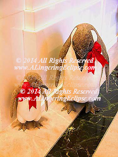 Christmas Penguin Family Close Up