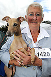 19-8-2014: KILLARNEY DOG SHOW: Pictured at the Killarney District Canine Club dog show on Tuesday were Maureen Wade, Wexford with 'Willow' her Italian Greyhound.<br /> Picture by Mary Susan MacMonagle
