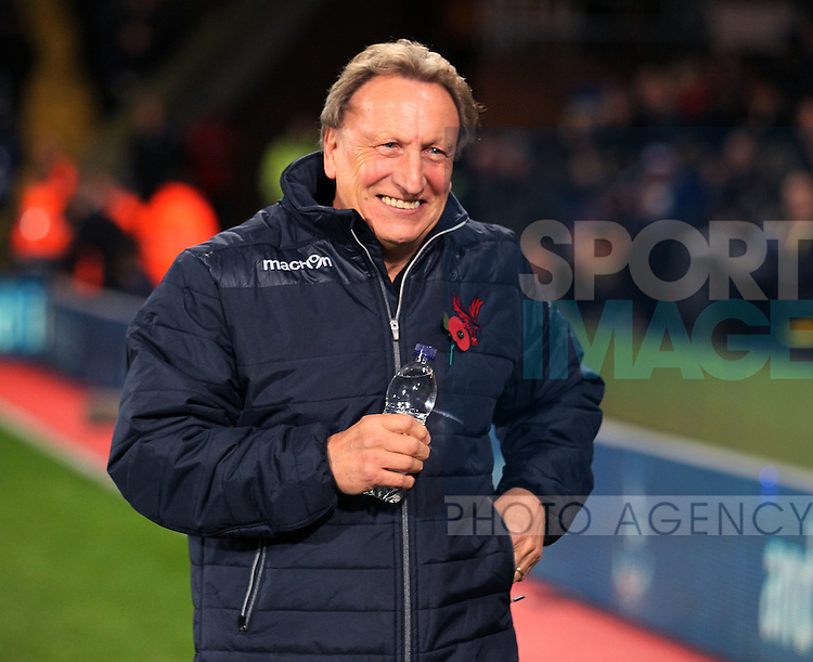Crystal Palace's Neil Warnock looks on<br /> <br /> - Barclays Premier League - Crystal Palace vs Sunderland- Selhurst Park - London - England - 3rd November 2014  - Picture David Klein/Sportimage