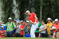 Li Haotong (Asia) chipping onto the 16th green during the Singles Matches of the Eurasia Cup at Glenmarie Golf and Country Club on the Sunday 14th January 2018.<br /> Picture:  Thos Caffrey / www.golffile.ie
