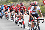 Fabio Aru (ITA) UAE Team Emirates in action during Stage 5 of La Vuelta 2019 running 170.7km from L'Eliana to Observatorio Astrofisico de Javalambre, Spain. 28th August 2019.<br /> Picture: Luis Angel Gomez/Photogomezsport | Cyclefile<br /> <br /> All photos usage must carry mandatory copyright credit (© Cyclefile | Luis Angel Gomez/Photogomezsport)