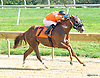 Cowtown Brown winning at Delaware Park on 10/3/15