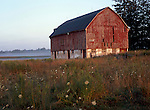 Red Painted Barn with Morning Mist