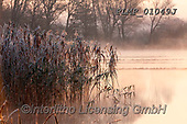 Marek, CHRISTMAS LANDSCAPES, WEIHNACHTEN WINTERLANDSCHAFTEN, NAVIDAD PAISAJES DE INVIERNO, photos+++++,PLMP01049J,#xl#