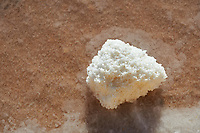 Pictures & images of Natural sea salt in a salt pan at Trapani, Sicily