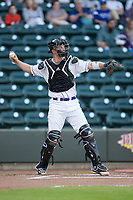 Winston-Salem Dash catcher Zack Collins (8) throws the ball back to his pitcher during the game against the Buies Creek Astros at BB&T Ballpark on April 13, 2017 in Winston-Salem, North Carolina.  The Dash defeated the Astros 7-1.  (Brian Westerholt/Four Seam Images)