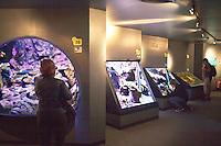 Cherbourg Cité de la Mer  Museo dedicato al mare l'acquario