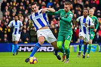 Brighton & Hove Albion v Watford - 02.02.2019