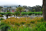Academy of Sciences, Golden Gate Park