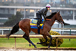 November 1, 2018: West Coast, trained by Bob Baffert, exercises in preparation for the Breeders' Cup Classic at Churchill Downs on November 1, 2018 in Louisville, Kentucky. Alex Evers/Eclipse Sportswire/CSM