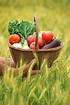 Crops: Bounty