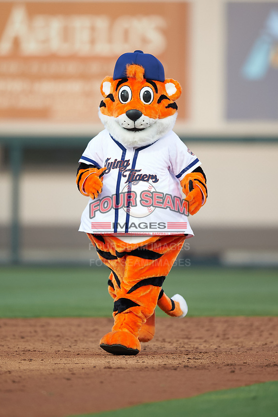 The Lakeland Flying Tigers mascot during a game against the Jupiter Hammerheads on April 17, 2017 at Joker Marchant Stadium in Lakeland, Florida.  Lakeland defeated Jupiter 5-1.  (Mike Janes/Four Seam Images)
