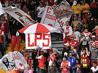 BOGOTÁ-COLOMBIA, 24-11-2019: Hinchas de Independiente Santa Fe animan a su equipo durante partido de la fecha 5 de los cuadrangulares semifinales entre Independiente Santa Fe y Deportivo Cali, por la Liga Águila II 2019, jugado en el estadio Nemesio Camacho El Campín de la ciudad de Bogotá. / Fans of Independiente Santa Fe cheer for their team during a match of the 5th date of the quarter semifinals between Independiente Santa Fe and Deportivo Cali, for the Aguila Leguaje II 2019 played at the Nemesio Camacho El Campin Stadium in Bogota city. / Photo: VizzorImage / Luis Ramírez / Staff.