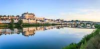 France, Indre-et-Loire (37), Amboise et la Loire le soir