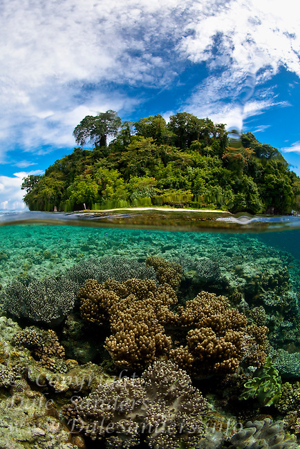 Split over under view of a coral reef and Restorf Island in Kimbe Bay, off New Britain Island, Papua New Guinea.