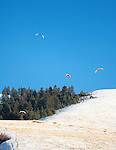 A group of paragliders in the air above Mount Sentinel on a winter day in Missoula, Montana