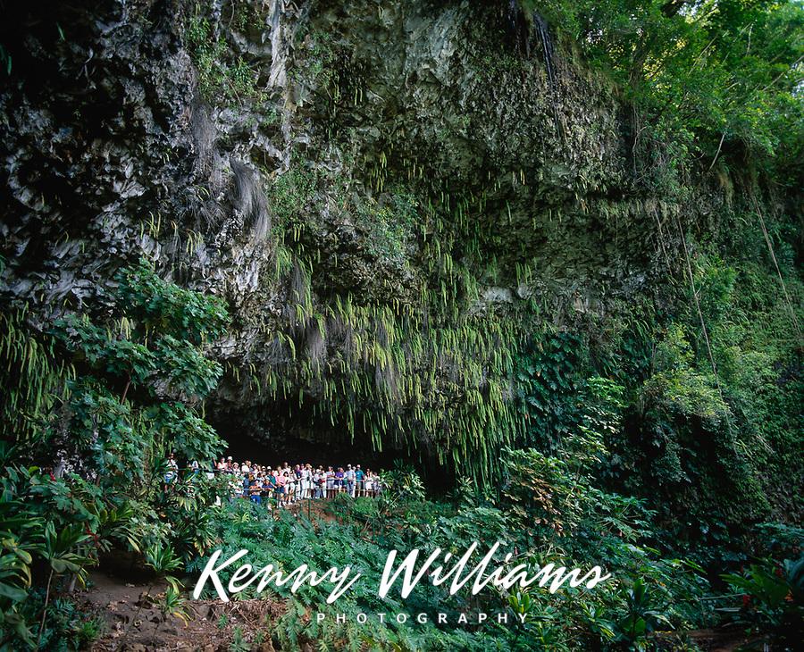 Fern Grotto, Kauai, Hawaii, USA.