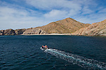 Isla Santa Catalina, the island with the highest amount of endemism in the Sea of Cortez.