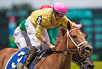 ELMONT, NY - JUNE 09: Monomoy Girl  #3, ridden by Florent Geroux, wins the Acorn Stakes Belmont Stakes Day at Belmont Park on June 9, 2018 in Elmont, New York. (Photo by Alex Evers/Eclipse Sportswire/Getty Images)