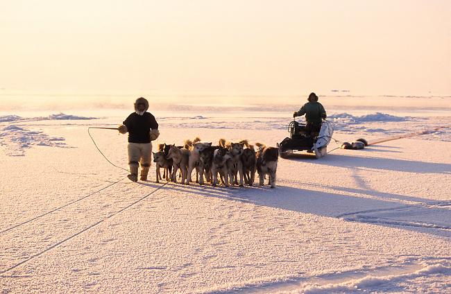 Inuit hunters with a dog team seal hunting at the floe edge near Cape York. Savissivik, Northwest Greenland