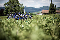 Team Total Direct Energie team car rolling through the vineyards. <br /> <br /> Stage 8: Macon to Saint-Etienne (200km)<br /> 106th Tour de France 2019 (2.UWT)<br /> <br /> ©kramon