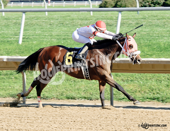 Dreaming of Jazz winning at Delaware Park on 9/27/14
