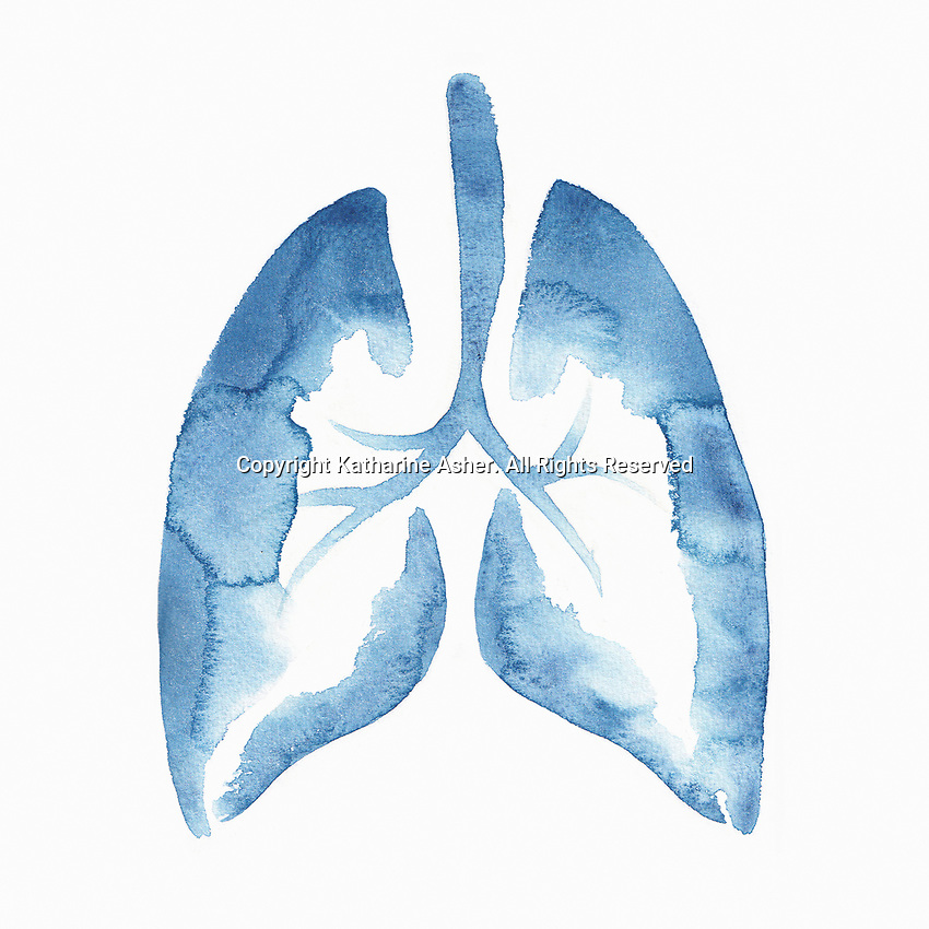 Blue watercolour lungs
