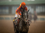 ARCADIA, CA - MARCH 10: Peace #7, ridden by Drayden Van Dyke at the San Felipe Stakes at Santa Anita Park on March 10, 2018 in Arcadia, California.(Photo by Alex Evers/Eclipse Sportswire/Getty Images)