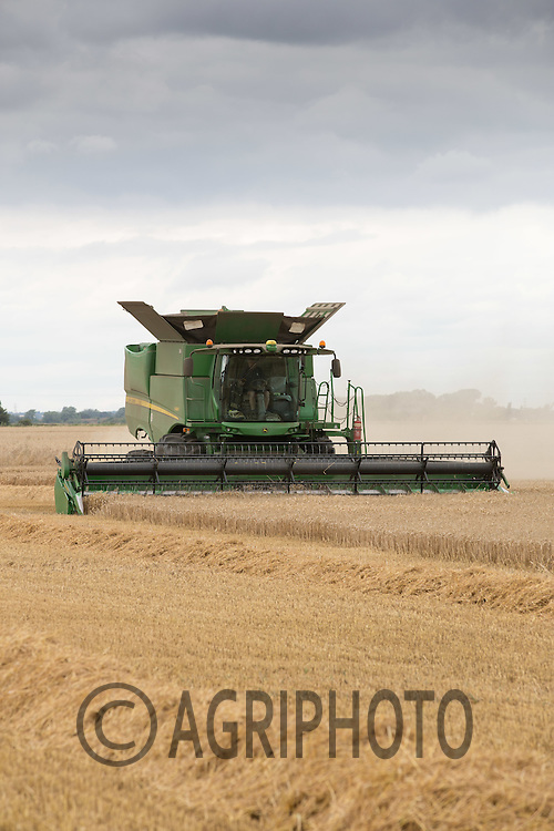 Harvesting winter wheat in Lincolnshire<br /> Picture Tim Scrivener 07850 303986<br /> &hellip;.Covering agriculture in the UK&hellip;.
