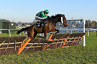Winner of The Tysers Mares' Handicap Hurdle Miss Tynte ridden by Tom Scudamore and trained by David Pipe during Horse Racing at Plumpton Racecourse on 2nd December 2019