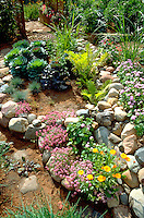 Rock garden with a variety of shade plants.  Edina Minnesota USA