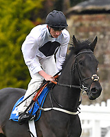 Isolate ridden by Rob Hornby goes down to the start  of The Sorvio Insurance Brokers Maiden Stakes during Evening Racing at Salisbury Racecourse on 11th June 2019