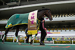 TOYOAKE,JAPAN-MAR 15: Saturnalia,ridden by Christophe Lemaire, after winning the Kinko Sho at Chukyo Racecourse on March 15,2020 in Toyoake,Aichi,Japan. Kaz Ishida/Eclipse Sportswire/CSM