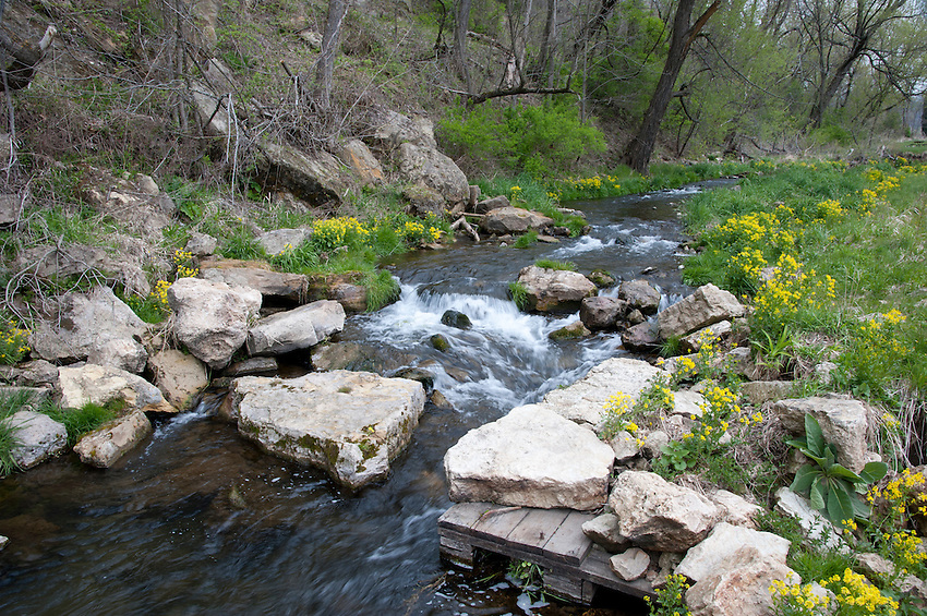 The North Fork of the Bad Axe river flows through trout habitat improvements in Wisconsin's Driftless Area near Viroqua.