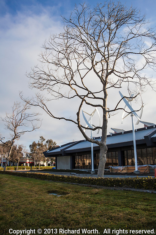 A leafless tree in front of two verical axis wind turbines at the Zero Net Energy Center being built in San Leandro, California.