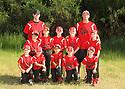 2014 Chico Baseball (Team 4)