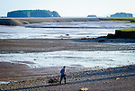 Man pulling wagon with clams and digging tools on the beach at Five Islands, Nova Scotia