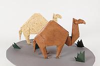 Origami dromedary camel designed by John Montroll folded by Rob Ribaudo.