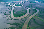 Australia, Western Australia, Kimberley region, aerial of meandering river in mudflats in rainy season, mangrove trees lining shores of main river and tributaries