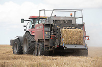 Baling wheat straw <br /> ©Tim Scrivener Photographer 07850 303986<br />      ....Covering Agriculture In The UK....